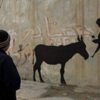 Neues aus den Ställen von Bethlehem und Farchach