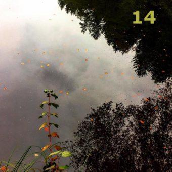 Der QUH-Adventskalender: das 14. Bildchen
