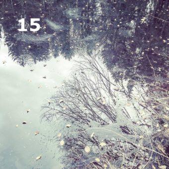 Der QUH-Adventskalender: das 15. Bildchen