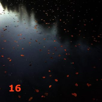 Der QUH-Adventskalender: das 16. Bildchen