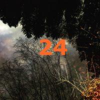 Der QUH-Adventskalender: das 24. Bildchen