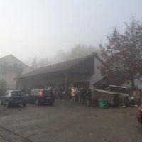 Durch den Nebel ...