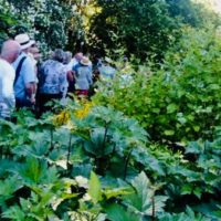 """Exkursion in Farchachs """"Wilde Gärten"""""""