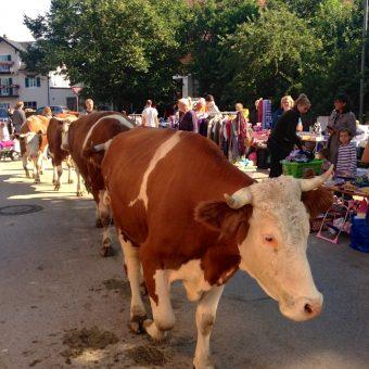 Ein voller Erfolg: Kuh und Krempel in Farchach