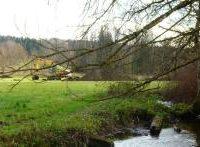 Renaturierung des Lüßbachs im Manthal