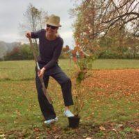 Das Baumfällen geht weiter - und eine Pflanzaktion dagegen